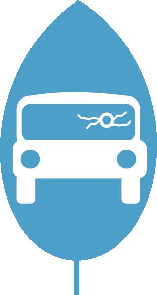 Vehicle Trauma Cleanup